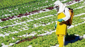 cambios. La aplicación y el tipo de fitosanitarios a usar, son parte del programa.