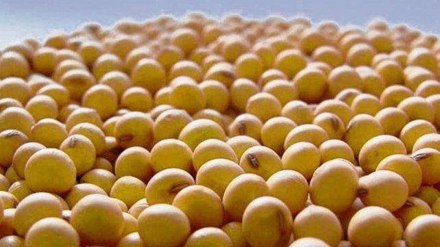 Semillas: Macro Seed estrenó variedades