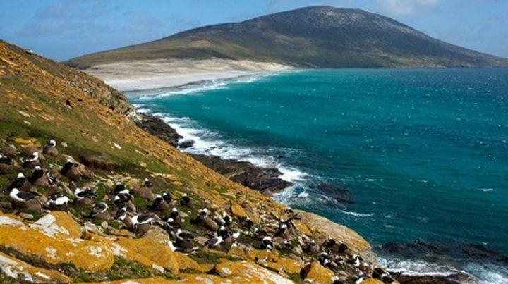 Islas Malvinas. La Armada contradice la información británica.