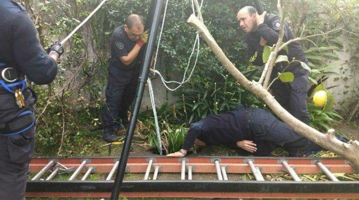 Gran labor. Los bomberos de La Plata mostraron su profesionalismo.