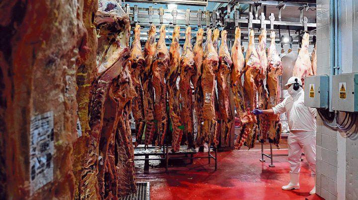 Demanda externa. La recomposición de las exportaciones argentinas de carne comenzó a afianzarse tanto en volumen como en las cotizaciones.
