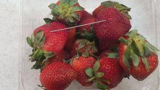 Frutillas que estaban a la venta tenían agujas de coser en su interior.