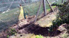 Cavaron un túnel y robaron en un country con cerco electrificado