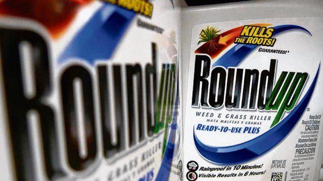 Roundup. Si produce cáncer es materia de debate en todo el mundo.