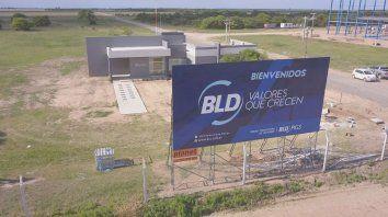 Valor agregado. La Unidad Productora de Lechones (UPL) de BLD en Noetinger, tendrá 5.500 madres y una planta de alimento balanceado.