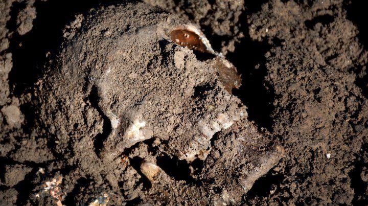 Un cráneo humano en una fosa común en la región iraquí de Sinjar.