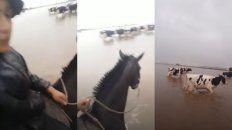 Viralizan un video de un gaucho trabajando en medio del temporal
