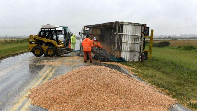 El cereal quedó sobre el asfalto en plena ruta.