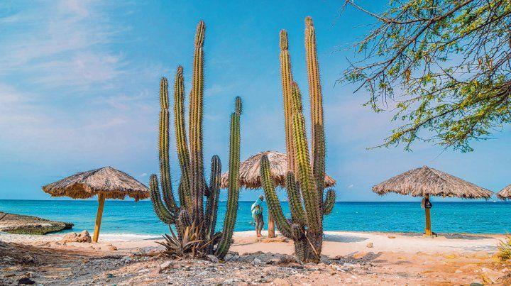 Paraíso de mar. Las playas solitarias de Aruba invitan al relax en un marco de naturaleza pura. Con arenas blancas de origen coralino y aguas tibias y de color turquesa.