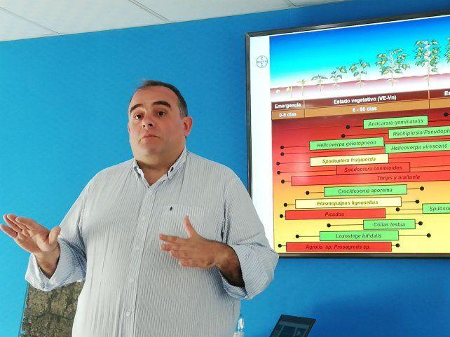 Santa Eduviges señaló que más de 13 mil productores siembran la segunda generación de sojas Intacta.