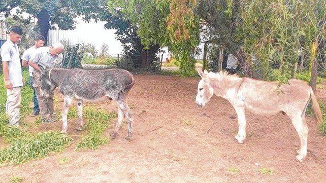 En casa. Juanchi (izq.) y Alberto fueron recuperados. El robo de ambos había tomado trascendencia nacional.