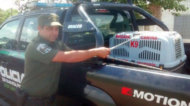 El pumita fue puesto a resguardo para ser trasladado a una reserva ecológica