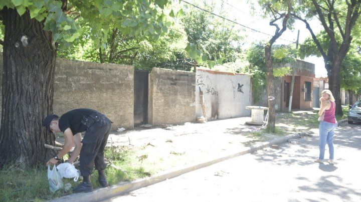 En Corazzi (Travesía) y Olivé aparecsin vida Domingo López