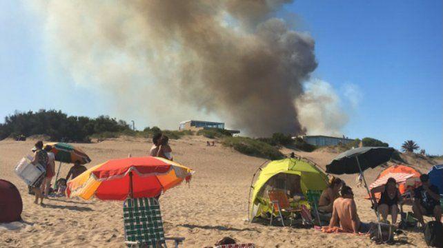 Un incendio forestal afectó la zona norte de Villa Gesell