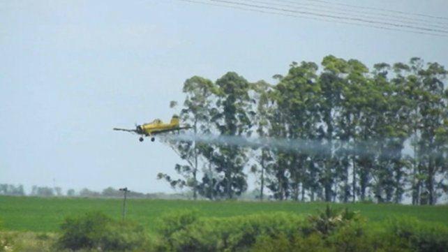 Peligro avión. Fumigaciones ilegales con agrotóxicos siguen en Entre Ríos.