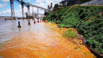 Así quedó la costa tras el derrame de aceite de soja. (Gentileza SL24)