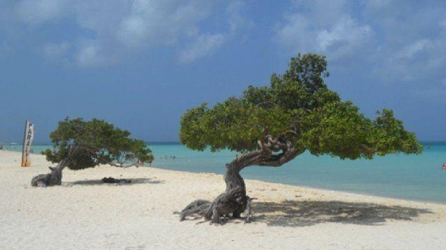 Caribe. Aruba tiene más días soleados al año que cualquier otra isla caribeña