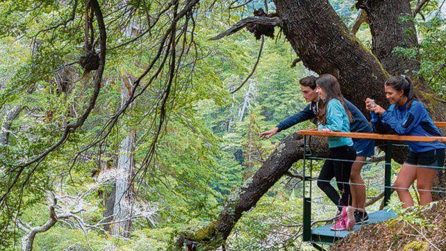 Paisajes que enamoran. Con la creación del Parque Nacional Los Alerces