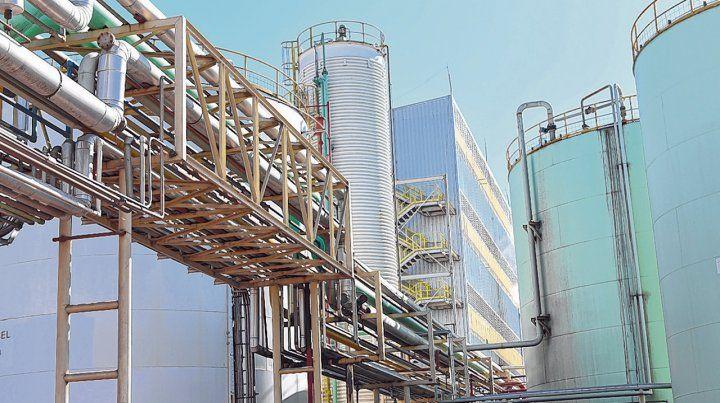 cambios. La suba de retenciones y la desaparición del diferencial arancelario impactaron en la industria oleaginosa nacional.