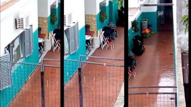 Captura del video que grabó el albañil.