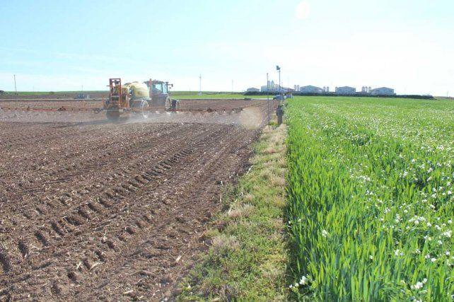 Advierten en Venado sobre el uso de agroquímicos