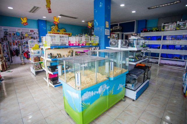 Mar del Plata prohíbe a los comercios exhibirmascotas para su venta