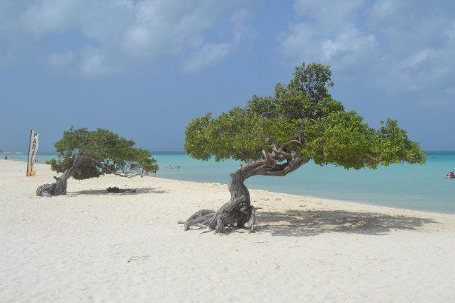 Aruba, nuevamente premiada por sus turistas
