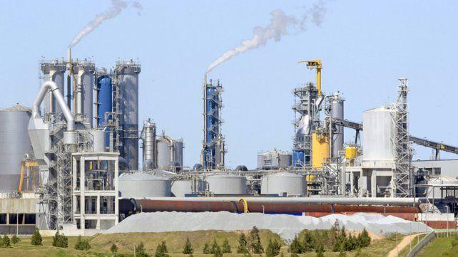 Uruguay aprobó la instalación de otra planta de pasta celulosa