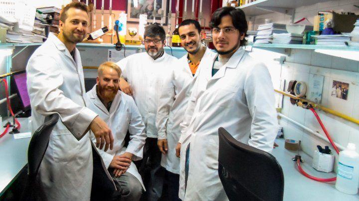 Científicos rosarinos avanzan contra un hongo del maíz