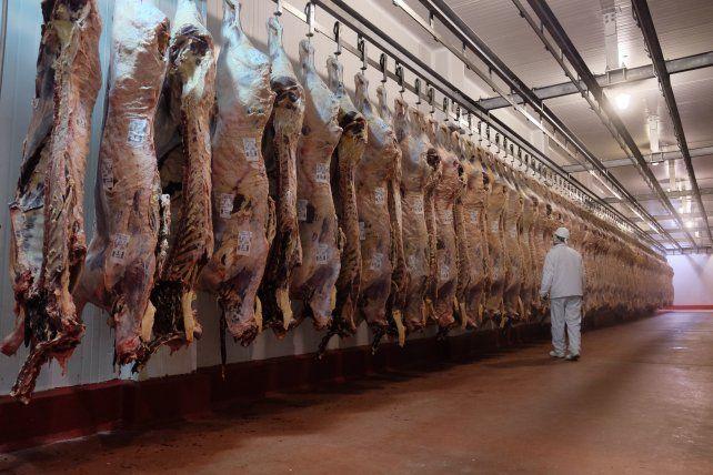 China concentra las exportaciones de carne