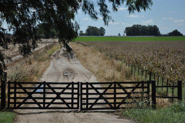 La tierra, una alternativa de inversión que brinda nuevas oportunidades