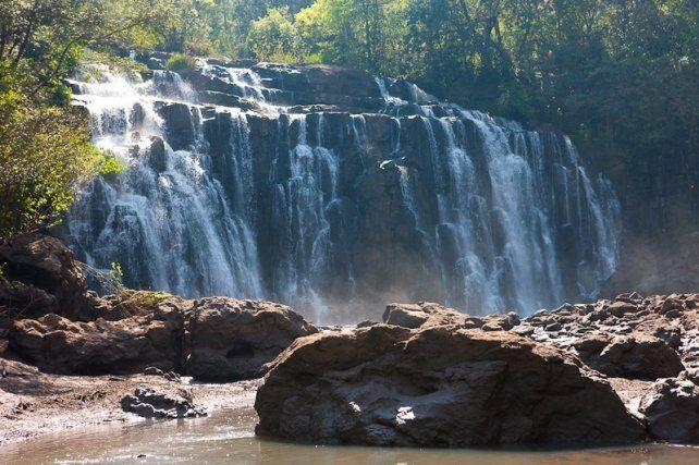 Viajes saludables en la Selva Misionera, la nueva tendencia del turismo experiencial