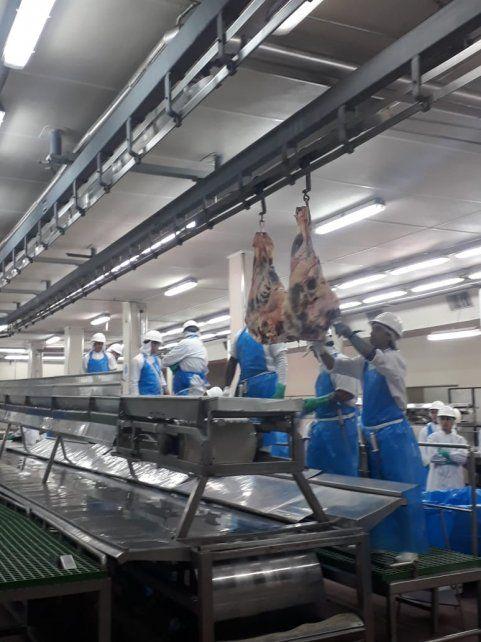 Tras siete años cerrado, el frigorífico Swift de Venado Tuerto comenzó con su producción