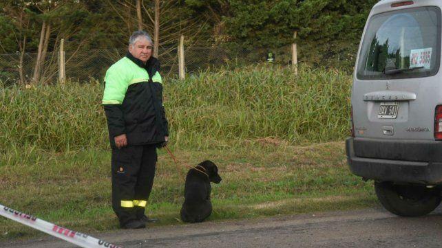 Un bombero retiene al perro que sobrevivió al accidente en el que perdió la vida el dueño.