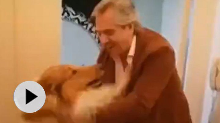El efusivo recibimiento del perro Dylan a su dueño Alberto Fernández