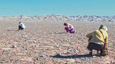 Un puñado de mujeres busca en el desierto de Atacama los huesos de las víctimas de la dictadura de Pinochet.