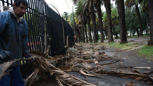 Fuertes vientos de hasta 84 kilómetros por hora en Rosario