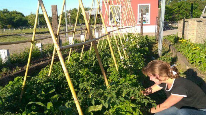 A sembrar. En el lugar funciona también la Huerta Pública.