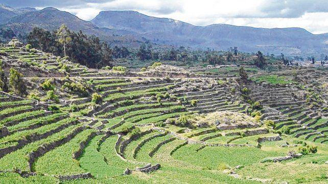 El Excedente Agrícola Y Las Civilizaciones