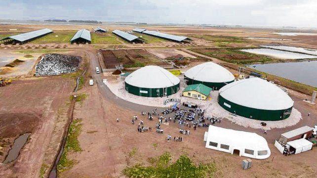 Expo 2019. Distintas empresas confirmaron la asistencia al encuentro..