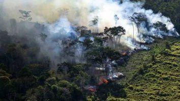 La Nasa difunde imágenes de incendios en el Amazonas