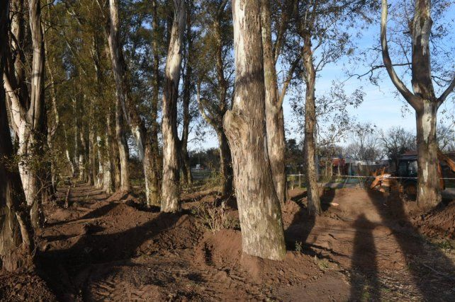 En este predio cercano a Luis Palacios el equipo de Antropología Forense está buscando los restos de Paula Perassi.