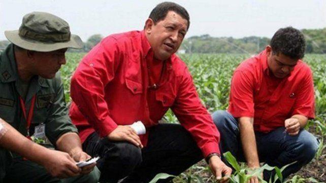 fracaso. Chávez durante su campaña contra los latifundios.