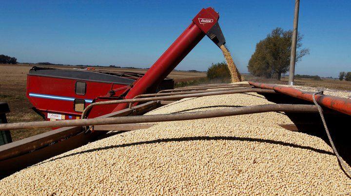 China es el consumidor número uno de harina de soja en el mundo.