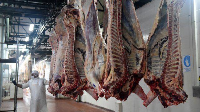 Al mundo. Las exportaciones movilizan el aumento de la producción de carne vacuna