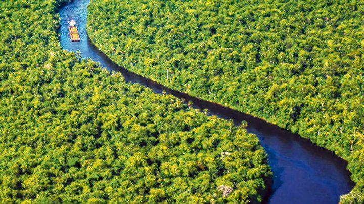 Salvaje. Surinam fue una colonia de plantaciones de los Países Bajos hasta que obtuvo su independencia en 1975.