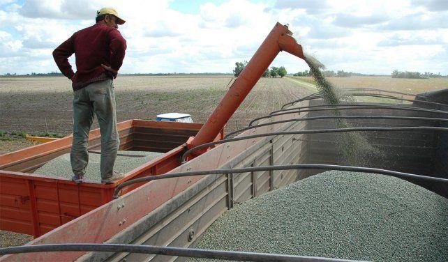 La Sociedad Rural advierte que la presión tributaria para el campo es insostenible