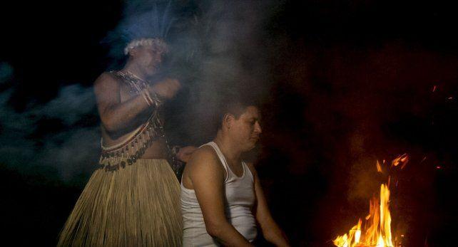 Descubren cómo afecta al cerebro la ayahuasca