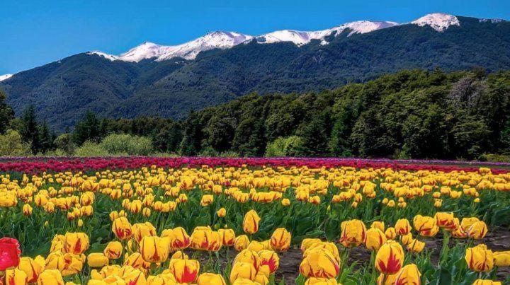 Naturaleza. Esquel y Trevelin proponen para esta temporada excelentes servicios para los turistas que las visiten.
