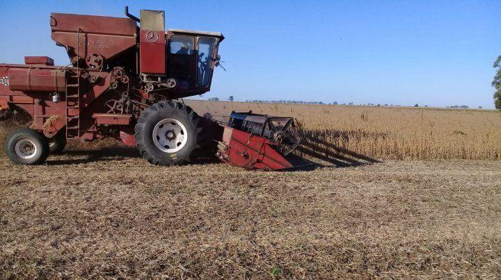 El Gobierno subió por decreto las retenciones a los productos agropecuarios